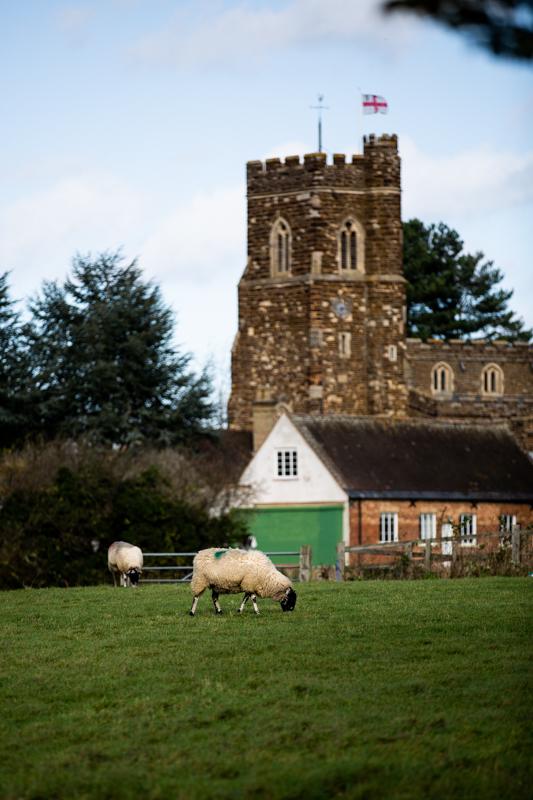 Church & Sheep